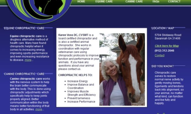 Voss Canine & Equine Chiropractic