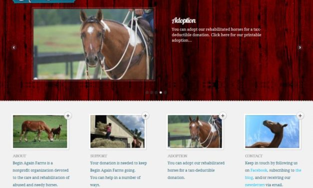 Begin Again Farms Equine Shelter