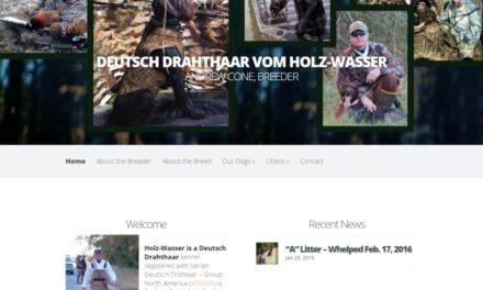 Holz-Wasser Deutsch Drahthaar